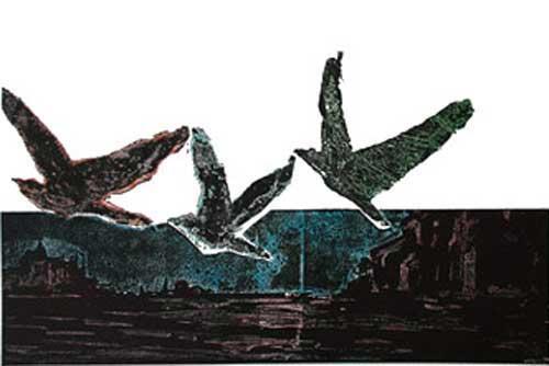 Kuşlar ve Doğa Üzerine